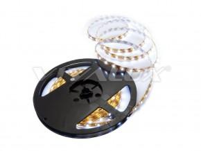 LED ленти CODA LED - CODA LED CW
